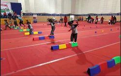 Male And Female Gymnastics Coaching