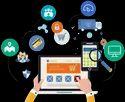 Basic Business Site Web Designing Service
