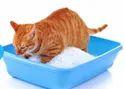 Cat Litter Bentonite (Pet Litter Bentonite Powder)