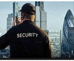 Personal Armed Infrastructural Security Services, in Mumbai