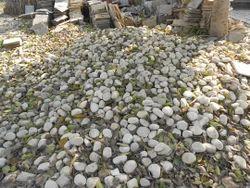 White River Pebble Stone