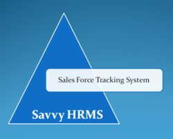 Sales Force Tracking System