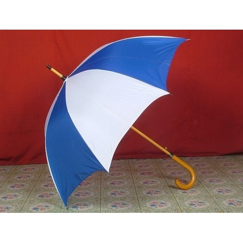 Hand Held Umbrella