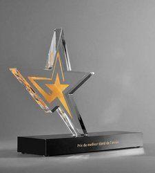 7 Inch Star Acrylic Trophy