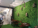 Site Images Vertical Artificial Garden