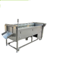 MSTP-1000 Fresh Ginger / Potato Washer And Peeling Machine