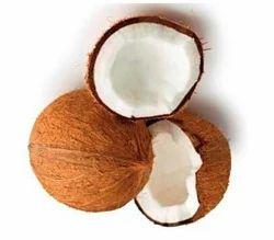 A Grade Fresh Organic Coconut