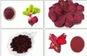 A Grade Freeze-dried Beetroot, Packaging Size: Gustomized