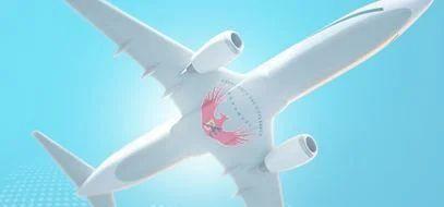 Bhagwati Air Express Pvt  Ltd , New Delhi - Service Provider of Air
