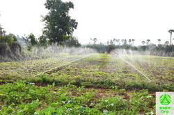 1000 Sqm Spray Irrigation Kit