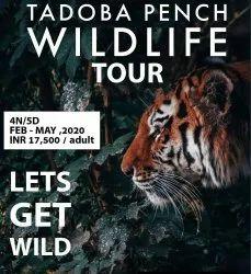 6 Maharashtra 4 Nights 5 Days Tadoba Pench Wildlife Tour Package Cost