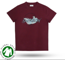 ca42b906 Mens T-Shirts - Men T shirts, Gents T-Shirts Exporters in India