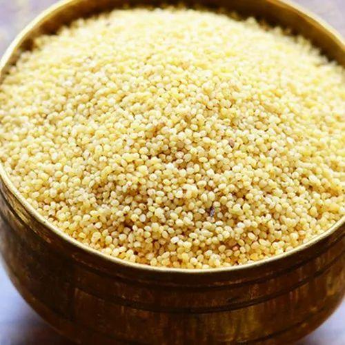 Shaandar Organic Foxtail Millet