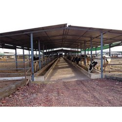 MS Dairy Farm Sheds