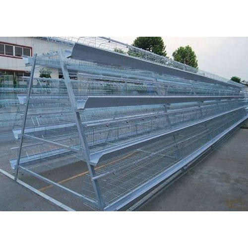 TATA WIRON Zinc Plating And GI Commercial Layer Poultry