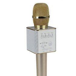 Karaoke Bluetooth Speaker