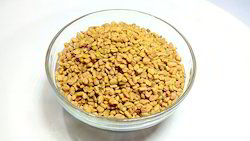 Yellowish Brown And Angula Fenugreek Seed, Packaging Size: 25 Kgs/50 Kgs