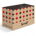 Light Weight Printed Corrugated Cardboard Box