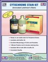 Cytochrome Stain Kit