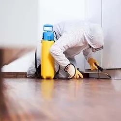 Monthly Residential Pest Control Service, In Delhi