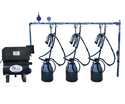 Buffalo Bucket Milking Machine