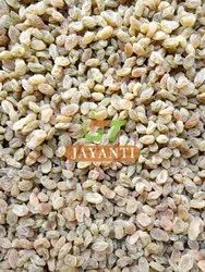Packed Indian Raisins, Packaging Size: 10kg Box
