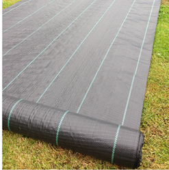 Black Plain Ground Fabric Net