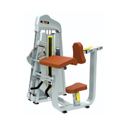 Dual Biceps / Triceps Machine