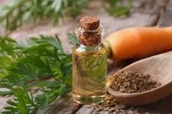Essential Carrot Seed Oil