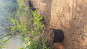 Plastic 5 Liter Pots