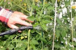Residential Garden Pest Control, Anywhere In Tamilnadu