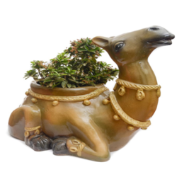 Decorative Camel Shape Plant Pot