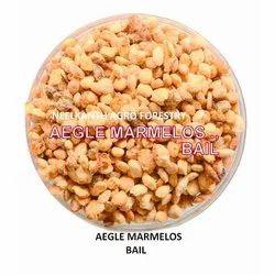 Bael Seed