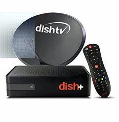 Dish TV Set Top Box - Dish TV Set Top Box Latest Price, Dealers