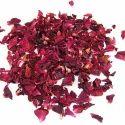 Sinhal Red Rose Petals - Rosa Indica - Gulab Patti