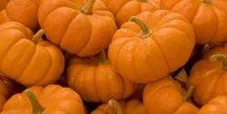 Pumpkin Pulp