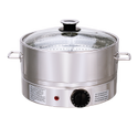 Electrical Steamer