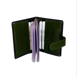 Card Holder with Albums