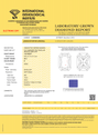 Radiant Cut 1.04ct E VS2 IGI Certified CVD TYPE2A
