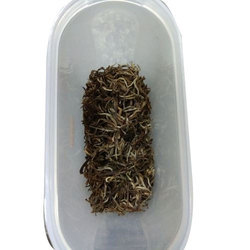 Prakash Premium White Tea, Pack Size: 1kg, Packaging Type: Packet