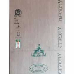 Lotus Ply MR Grade Plywood Board, For Furniture, Size: 8 x 4 Feet