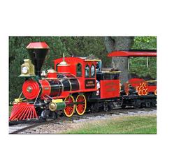 Garden Mini Train