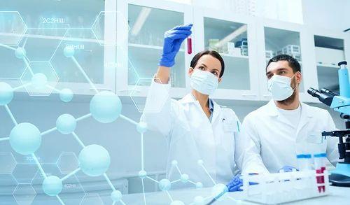 DNA Testing Services in Sri Nagar Colony, Hyderabad | ID: 2876393448
