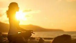Sports 8am to 9pm Best Yoga Classes In Kochi