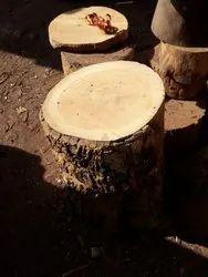 Bhera Wood