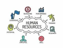 Human Resource Management System Software, For Online