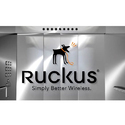 Ruckus Networks Indoor Access Point