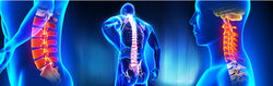 Spine Surgery Services