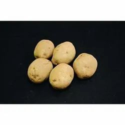 Seed Potatoes, Pack Size: 50kg