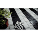 Anti Skid Paving Blocks
